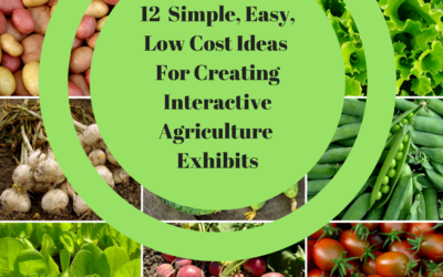 12 Simple Easy Low Cost Ideas For Creating Interactive Agriculture Exhibits and Activities